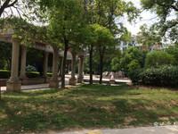 江山国际花园 3室2厅 飞机户型送外置80平阁楼送家具家电 宿豫实小学区房