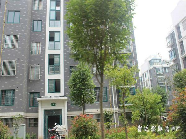 浦东国际花园实景图