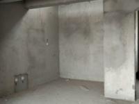 新新家园 一期 电梯 复式房